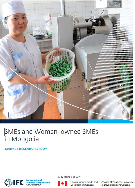 TEMP SMEs cover